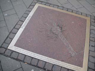 manhole12.jpg
