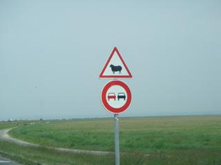 sign-5.jpg